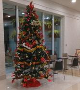 クリスマスツリーのレンタル受付が始まりした!の画像